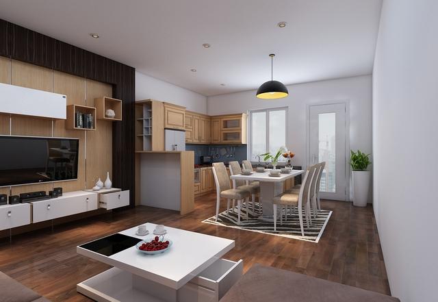 nhà bếp liền phòng khách 2