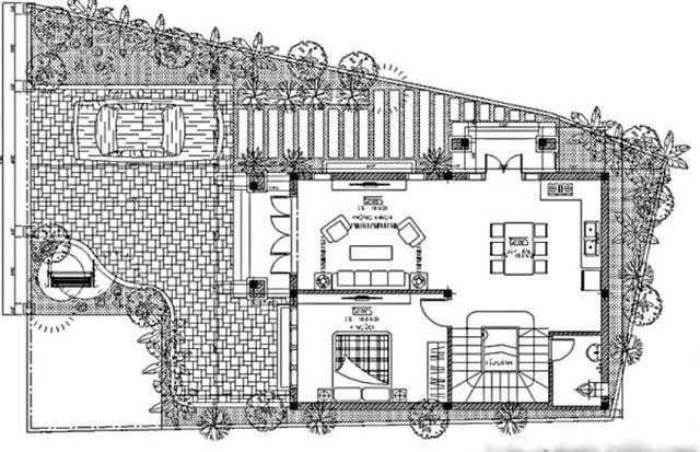 biệt thự vườn 3 tầng mặt tiền 20m-3